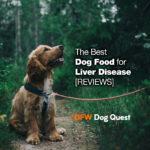 6 Best Dog Food for Liver Disease [2020 REVIEWS]